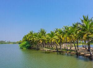 paradise-beach1